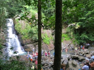 Our gang joins others in taking a dip at El Yunque Rainforest.